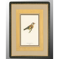 John Richard Animal Wall Art - Print in Black and Gold  GRF-4082C
