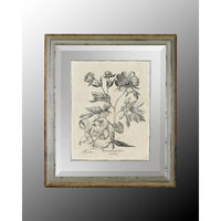 John Richard Botanical/Floral Wall Decor Open Edition Art in Crackle GRF-4488C