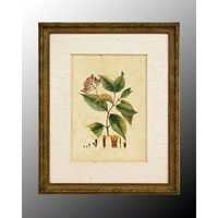 John Richard Botanical/Floral Wall Decor Open Edition Art GRF-4902A