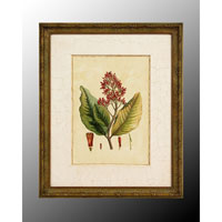 John Richard Botanical/Floral Wall Decor Open Edition Art GRF-4902B