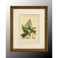 John Richard Botanical/Floral Wall Decor Open Edition Art GRF-4902C