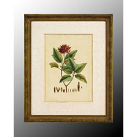 John Richard Botanical/Floral Wall Decor Open Edition Art GRF-4902D