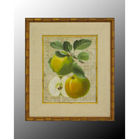 John Richard Botanical/Floral Wall Decor Open Edition Art GRF-5036A