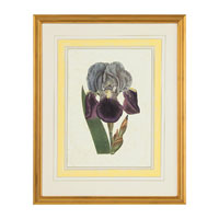 John Richard Botanical/Floral Wall Decor Open Edition Art GRF-5245A