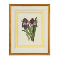 John Richard Botanical/Floral Wall Decor Open Edition Art GRF-5245B