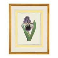 John Richard Botanical/Floral Wall Decor Open Edition Art GRF-5245C
