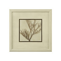 John Richard Botanical/Floral Wall Decor Open Edition Art GRF-5364F
