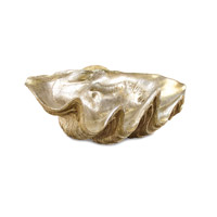 Shells Decorative Accessory
