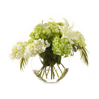 John Richard JRB-2283W Traditional Elegance White Botanical, Fresh Water Look