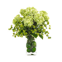 John Richard JRB-2325W Classic Greens Green Botanical, Fresh Water Look