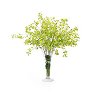 John Richard Fresh Water Look Botanical in Greens JRB-2577W