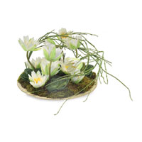 John Richard Florals Botanical in Whites JRB-2593