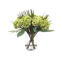 John Richard Fresh Water Look Botanical in Greens  JRB-2605W