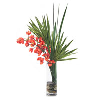 John Richard Fresh Water Look Botanical in Reds JRB-2607W