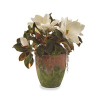 John Richard Florals Botanical in Whites JRB-2672