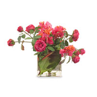 John Richard Fresh Water Look Botanical in Reds  JRB-2746W