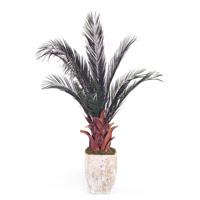 John Richard JRB-2772 Date Palm Green Botanical