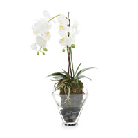 John Richard JRB-2847W Orchids White Botanical