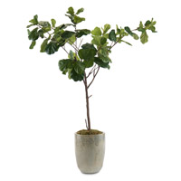 Fiddle Leaf Fig Green Decorative Tree