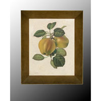 Botanical/Floral Wall Art - Oils  JRO-1717