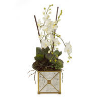 John Richard Florals Botanical in Whites JRB-2252