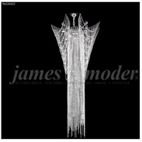 James R. Moder 96226S22 Medallion 12 Light 34 inch Silver Entry Chandelier Ceiling Light