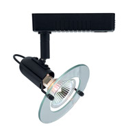 Mini Deco 1 Light 120V Black Track Lighting Ceiling Light