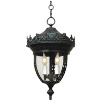 Opera 2 Light 10 inch Verde Outdoor Hanging Lantern