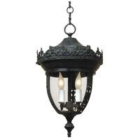 JVI Designs 1106-25 Opera 2 Light 10 inch Verde Outdoor Hanging Lantern