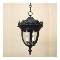 Opera 3 Light 14 inch Verde Outdoor Hanging Lantern