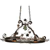 Bon Appetit 2 Light 44 inch Satin Nickel Pot Rack Ceiling Light in Antique Copper
