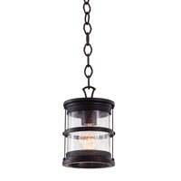 Kalco Hemlock 1 Light Hanging Lantern in Antique Copper 9566AC