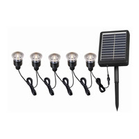 Kenroy Lighting Seriously Solar Solar Light String in Black 60503