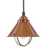 Kenroy Lighting Harbour 1 Light Mini Pendant in Copper   66342COP