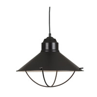 Harbour 1 Light 16 inch Oil Rubbed Bronze Pendant Ceiling Light