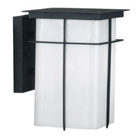 Mesa 1 Light 10 inch Textured Black Wall Lantern