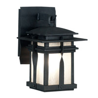 Kenroy Lighting Carrington 1 Light Outdoor Wall Lantern in Black   91900BL