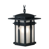 Kenroy Lighting Carrington 1 Light Outdoor Hanging Lantern in Black   91904BL