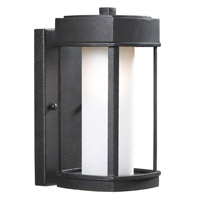 Sentinal 1 Light 12 inch Copper Bronze Outdoor Wall Lantern