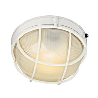 Signature 1 Light 10 inch White Fluorescent Outdoor Wall Lantern