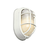 Kichler Lighting Signature 1 Light Fluorescent Outdoor Wall Lantern in White 11029WH photo thumbnail