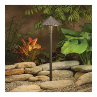 Kichler Lighting Outdoor Low Volt 1 Light Landscape 12V Path & Spread in Textured Architectural Bronze 15418AZT