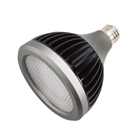 PAR38 LED Bulbs 277V 17 watt Clear Landscape Light