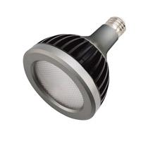 Kichler 18114 Par30 Led Bulbs 277V 13 watt Clear Landscape Light