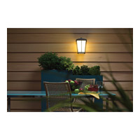 Kichler Lighting Brockton 1 Light Outdoor Wall Lantern in Anvil Iron 49217AVI alternative photo thumbnail
