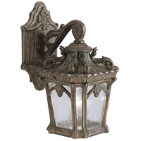 Tournai 1 Light 11 inch Londonderry Outdoor Wall Lantern