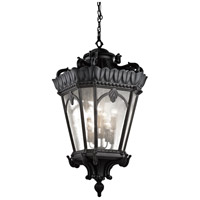 Tournai 8 Light 26 inch Textured Black Outdoor Hanging Pendant
