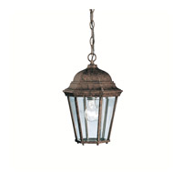 Madison 1 Light 9 inch Tannery Bronze Outdoor Pendant