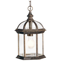 Barrie 1 Light 8 inch Tannery Bronze Outdoor Pendant in Standard