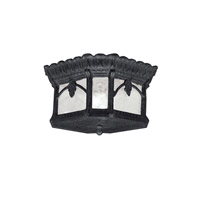 Tournai 2 Light 12 inch Textured Black Outdoor Flush & Semi Flush Mount